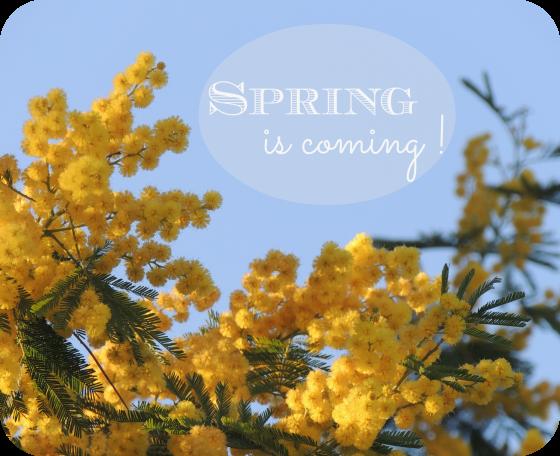 spring-mini