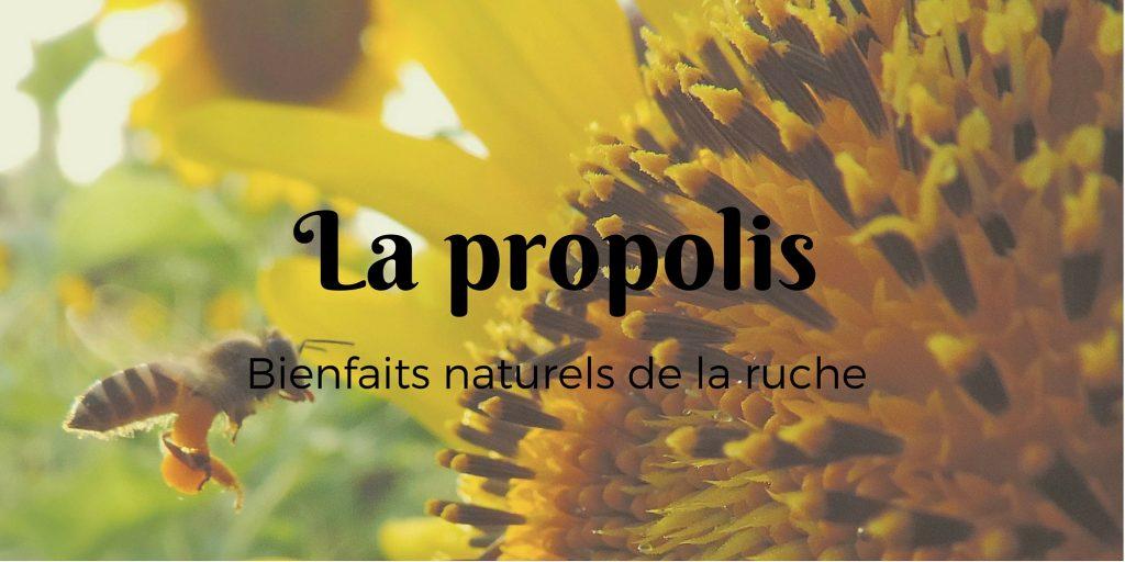 Le pollen (4)