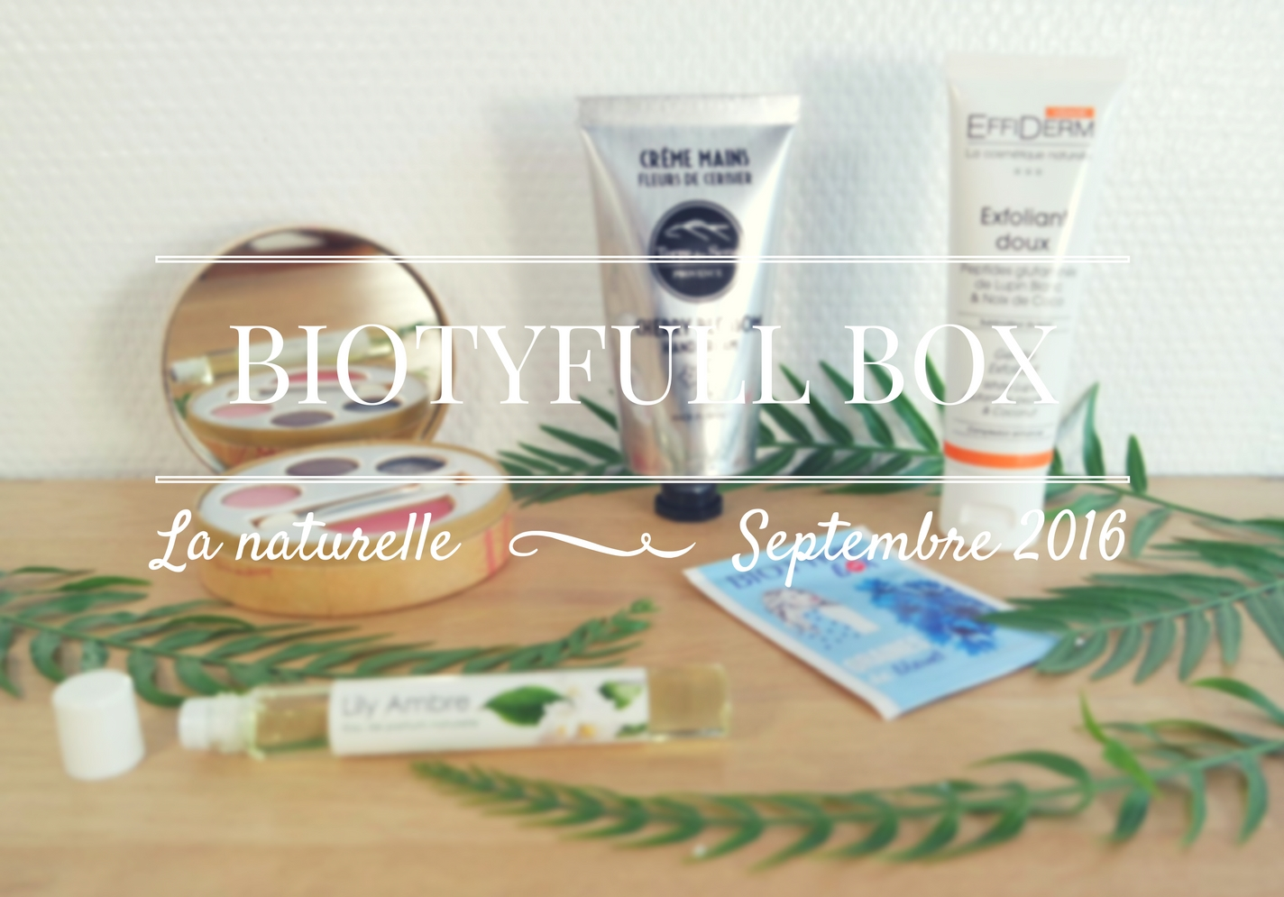 biotyfull-box-3